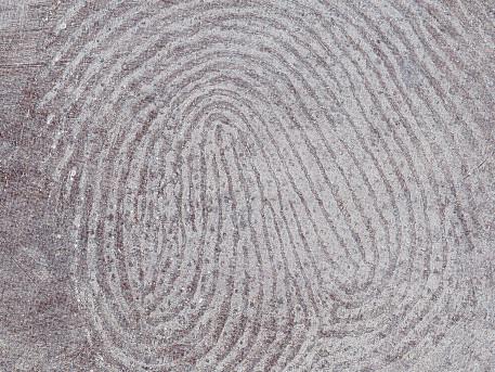 fingerprint_web